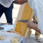ユダ木工屋上で都市型養蜂